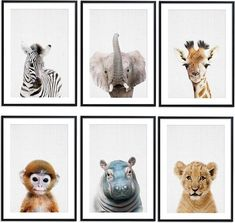 Baby Boy Rooms, Baby Bedroom, Baby Room Decor, Safari Animals, Baby Animals, Jungle Safari, Jungle Room, Baby Accessoires, Safari Nursery