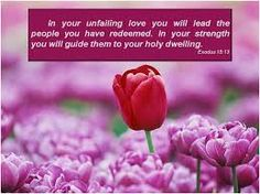 bible verses about love images Scripture Of The Day, Bible Verses About Love, Daily Scripture, Scripture Verses, Bible Verses Quotes, Scriptures, God Bless Us All, Christian Prayers, Thy Word