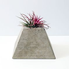 Pyramid Geometric Concrete Plant Pot Plant Included by OKConcrete
