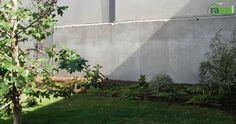 Jardin particular Torrevieja. Detalle Jardín