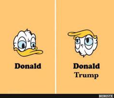 Donald / Donal Trump.   Lustige Bilder, Sprüche, Witze, echt lustig