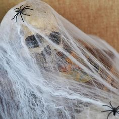 Funny Stretchable Plastic SPIDER WEB Cotton Party Decoration for Halloween