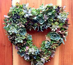Succulents Wreath Kit