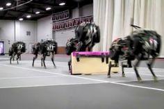 The Future of Robotics, MIT Cheetah Robot Lands The Running Jump, Futuristic Robots