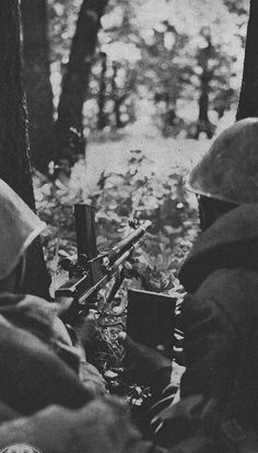 Romanian soldiers firing a ZB 30 LMG during the fights in the Taman Peninsula in the summer of 1943