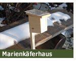 Marienkäferhaus / (c) thegardener.ch