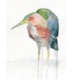 Green-heron-watercolor-print-fin-1444251890