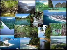 estos recursos hay en variedades como en esta imagen, pueden estar en playas, manglares, etc todo esto también generas ingresos para el país http://mppinforma.blogspot.com/2015/11/los-componentes-naturales-de-la-tierra.html