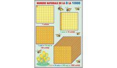 Numere naturale de la 0-1000 / Operaţii cu numere naturale Calendar, Holiday Decor, Life Planner