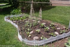 Sarah, Westendorf, Pittsford, Rochester, New York, NY, garden, soil, clay, herbs, vegetables, ground, container, cage, beans, peas, arugula, caesar, romaine, red, tomatoes, peppers, squash, summer, trellis, zucchini, eggplant, leeks
