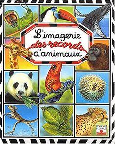 Amazon.fr - L'Imagerie des records d'animaux - Emilie Beaumont - Livres
