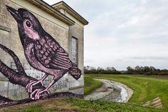 Reve + - Italian Street Artist - Conselice (IT) - 11/2014 -  */  #reve+ #streetart