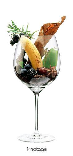 PINOTAGE  Blackberry, blackcurrant, banana, black cherry, blueberry, pepper, rosemary, clove, juniper, black pepper, bay, anise, coffee, tobacco