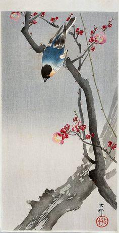 Bullfinch on Flowering Plum - Ohara Koson