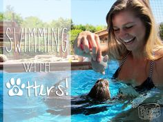 Swimming with otters is on my bucket list!!