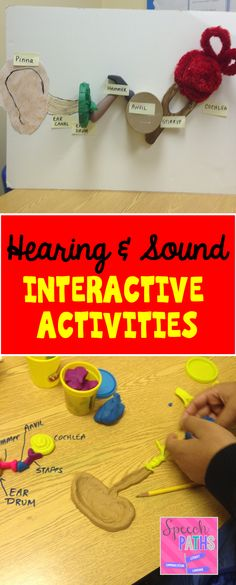 Hands on activities to help students learn about hearing & sound! Human Body Activities, Health Activities, Interactive Activities, Teaching Activities, Teaching Science, Hands On Activities, Listening Activities, Deaf Education Activities, Bilingual Education