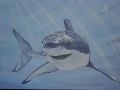 Shark Mural - boys room by Paint a Lifestyle Shark Painting, Faux Painting, Mural Painting, Animal Paintings, Animal Drawings, Sea Murals, Canvas Mobile, Shark Room, Shark Art