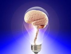 Neurodiversity – Part 4: Are all Brains Equal?