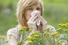 Polen, detonante de alergias en época de frio