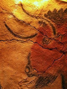 """""""Altamira cave.  Located in Spain, Altamira has some of the finest examples of Paleolithic cave art. """""""