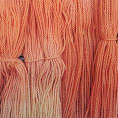 Madder Root Dip Dyed Falkland Fine Merino ManKnit Yarn
