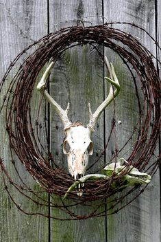 Hunters Wreath Variation Photograph by Diane Merkle