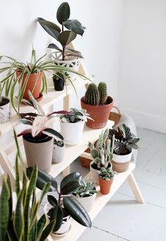 DIY Houten plantenladder. Perfect om je urban jungle iets meer te 'organiseren'. // via The Merry Thought