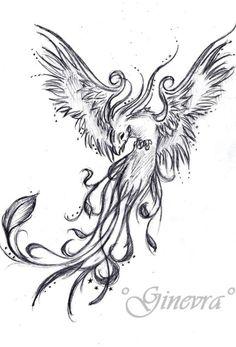 Tattoo sketch #phoenix
