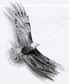 tattoos of eagles soaring | Soaring Eagle by Basixofblack on deviantART Tattoo idea...