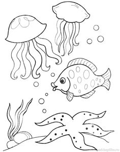 Fish Coloring Page, Easy Coloring Pages, Animal Coloring Pages, Coloring Books, Fish Drawings, Colorful Drawings, Cute Animal Drawings, Felt Animal Patterns, Stuffed Animal Patterns