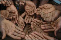 Millones de personas se mueren de hambre a pesar de que somos capaces y de hecho lo hacemos, de producir más que suficiente para alimentar a...
