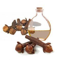 20 Our Ingredients Ideas Organic Skincare Ingredients Fruit In Season