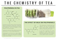 Infographic: What's Really Inside Your Tea Bag