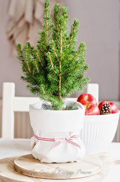 Prairie Charm: French Farmhouse inspired Christmas