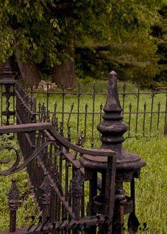 Beautiful old iron fence.