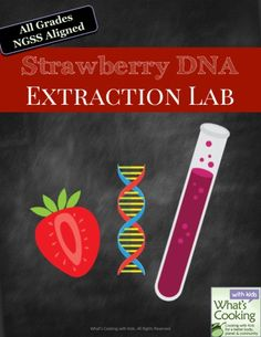 Kitchen Science - Learn how to extract DNA from Strawberries using everyday ingredients.