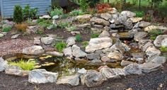 Google Image Result for http://www.wildgingerfarm.com/images/WaterFeatureRockGarden001.JPG
