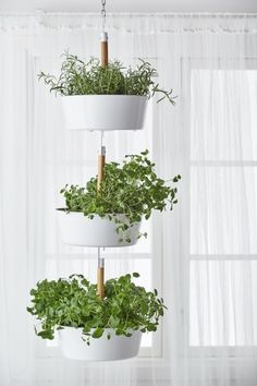 BITTERGURKA Hanging planter, white BITTERGURKA hanging planter - Use a single one or hook a few planters together to create a vertical herb garden indoors. Hang your herbs by a window, then unhook and bring to the table or cooking pot for fresh herbs with Hanging Plants, Window Plants, Garden Design, Hanging Planters, Window Herb Garden, Ikea Garden, Herb Garden In Kitchen, Kitchen Herbs, Indoor Plants