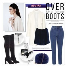 """""""Over knee boots"""" by kitty-kat9 ❤ liked on Polyvore featuring The Row, Steve Madden, Dion Lee, WÃ¥ven, Casetify, Christian Dior and GALA"""