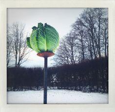 Winter decoration at Fredriksdals garden in Sweden (I huvudet på Elvaelva)