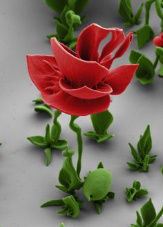 [Video] Crystal Nano Flowers And The Future Of Architectural Chemistry | The Creators Project