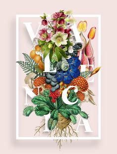 Valencia Typeface - Experimental Poster Series on Behance
