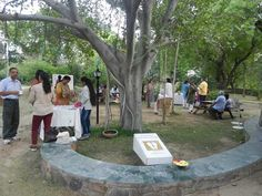 Tea in the GC lawns after Meditation. Event: Special Meditation at The Shrine on the occasion of Sri Aurobindo's Birthday and India's Independence day; Date: 15 Aug