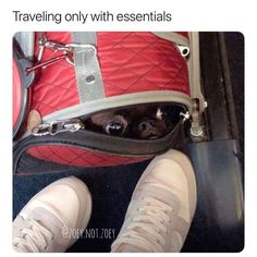 Traveling only with essentials.  Via Insta: