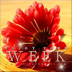 New Week Quotes, Good Week, Tags, Blog, Blogging, Mailing Labels