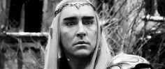 Thranduil concerned about his people.