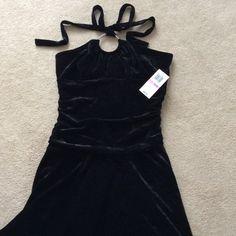 SPRING SALE NWT velvet dress with stone neck Knee length black velvet halter dress with handkerchief skirt. Purchased at Macy's for my daughter, has never been worn. 90% polyester, 10% spandex. Junior's size 11/12. B. Darlin Dresses Midi
