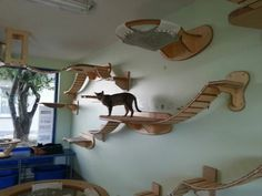 Ceiling Furniture For Cats By Goldatze Gold Paw (12). I Love How It All Looks So Clean