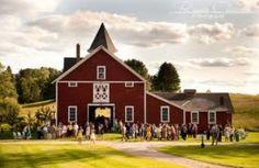 I want my wedding reception here!
