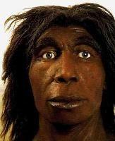 El hombre de Neanderthal constituye la primera especie de homínido moderna que vivió por toda Europa, y representa una forma que se adaptó al clima imperante hacia los 300 mil años atrás. Desarrolló un volumen craneal que llegó a ser superior al nuestro, alcanzado los 1500 cc. Desapareció hace unos 30 mil años, refugiado en cuevas del sur de la península Ibérica.